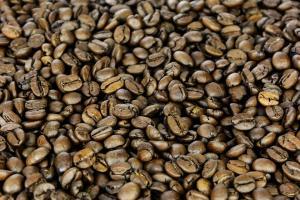 Зерновой кофе Лесной орех в Новосибирске